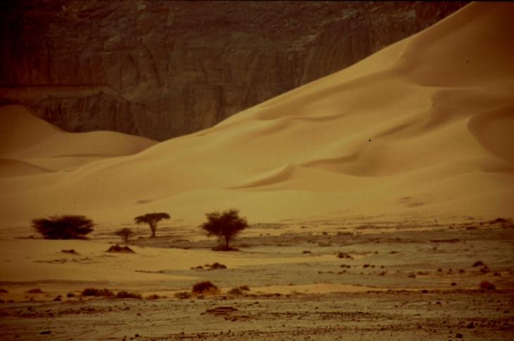 Algeria - Sahara 067