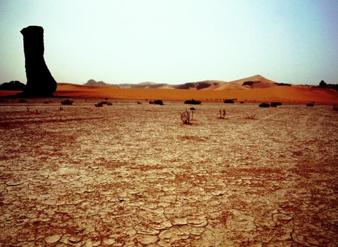 Algeria - Sahara 073