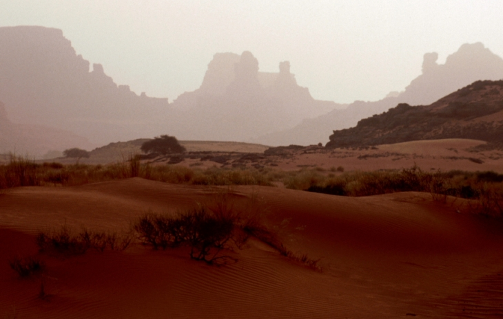 Algeria - Sahara 082