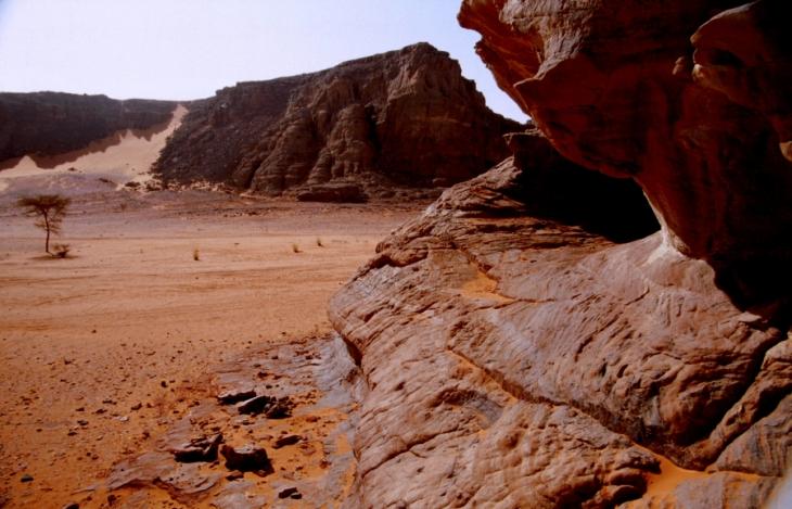 Algeria - Sahara 091