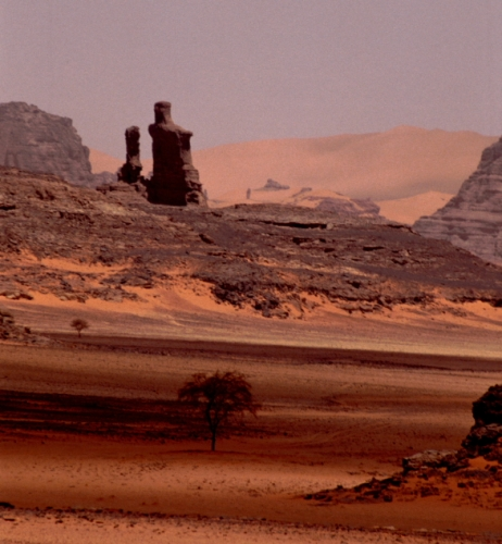 Algeria - Sahara 097
