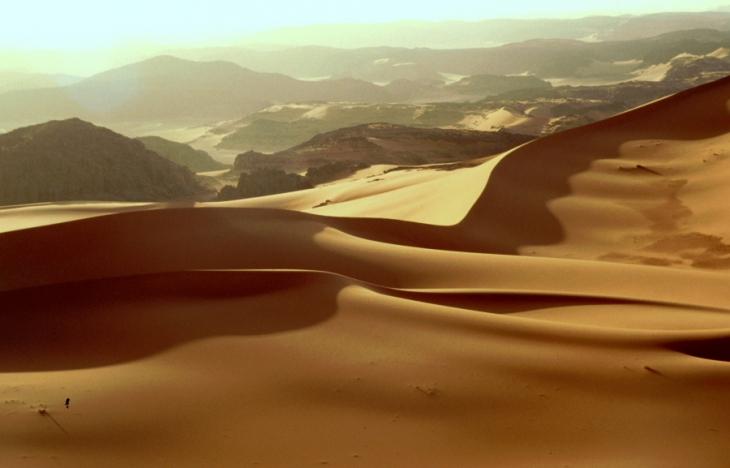 Algeria - Sahara 115