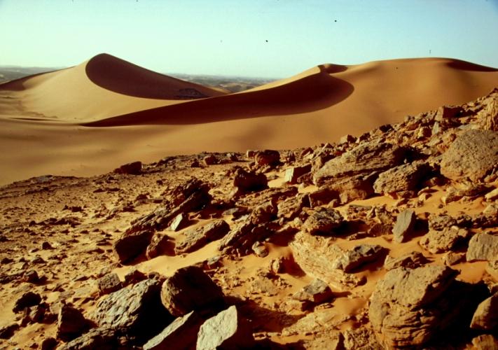 Algeria - Sahara 118