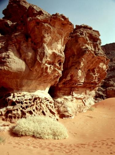 Algeria - Sahara 123