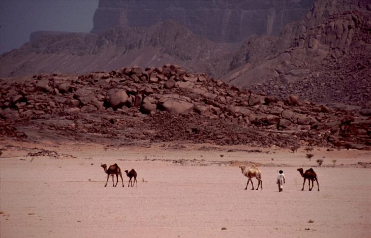 Algeria - Sahara 162