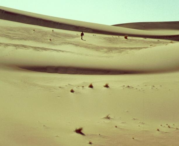 Algeria - Sahara 173