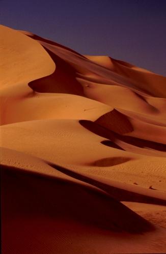 Algeria - Sahara 169
