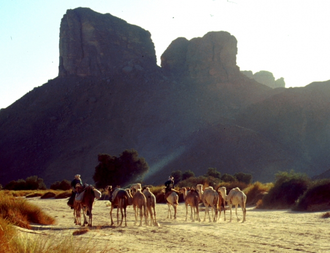 Algeria - Sahara 146