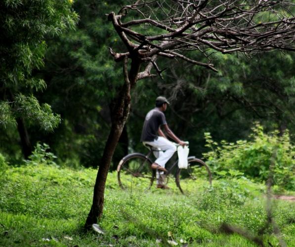 Sri Lanka - Anuradapura 30