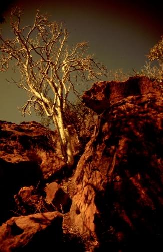 Namibia - Waterberg 12