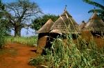 Benin first