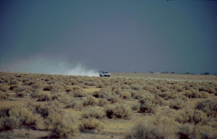Namibia - Etosha 11