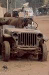 Mali - Mopti 62