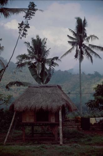 Indonesia - Flores 029 - Moni