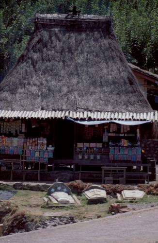 Indonesia - Flores 074 - Bena