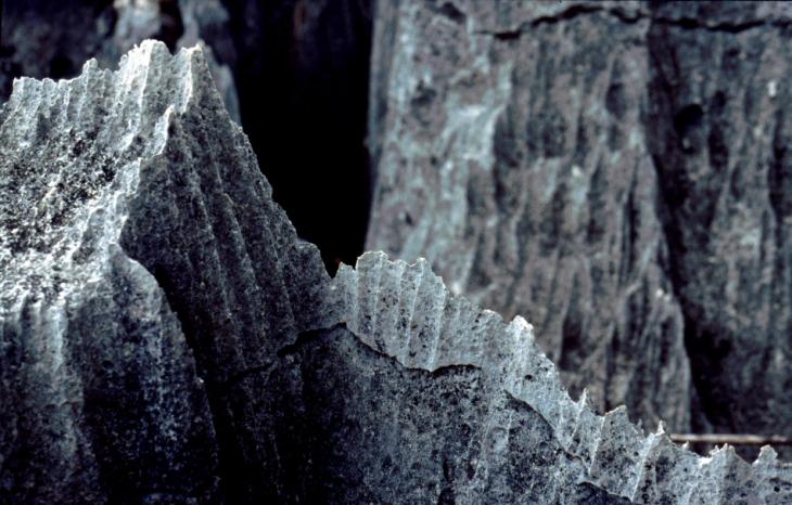 Madagascar - Tsingy of Bemaraha 13