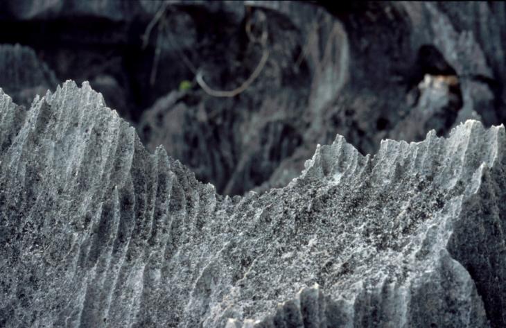 Madagascar - Tsingy of Bemaraha 15