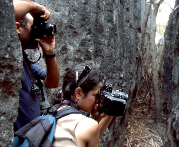 Madagascar - Tsingy of Bemaraha 16