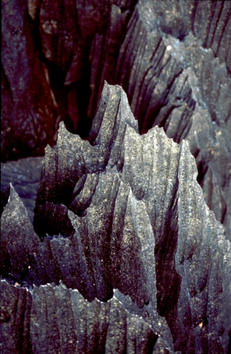 Madagascar - Tsingy of Bemaraha 04