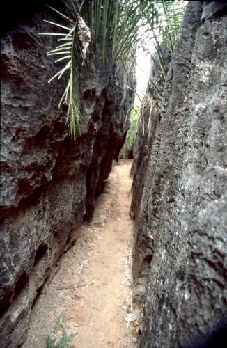 Madagascar - Tsingy of Bemaraha 05