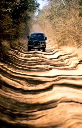Madagascar 08 - On the road to the Tsingy of Bemaraha