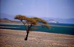 Kenya 098 - Turkana